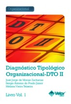 DTO II – Diagnóstico Tipológico Organizacional